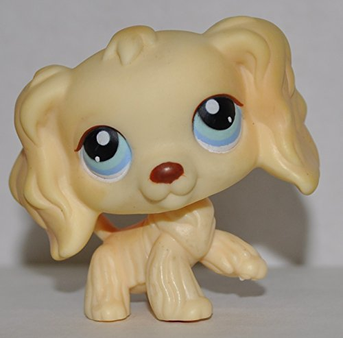 amazoncom cocker spaniel 91 yellow blue eyes littlest pet shop retired collector toy lps collectible replacement single figure loose oop out