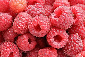 Wild Red Raspberry Seeds * Delicious Fruits * Sale *