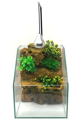 Penn Plax Presents The AquaTerrium .8 Gallon Planting Tank - Grow Plants and Fish in one Environment (SMALL) by Penn Plax