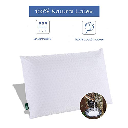SWEESLEEP Medium Soft Natural Talalay Latex Foam Bed Pillow Eco-Friendly for Sleeping with 100% Cotton Zippered Cover, Standard Size (24