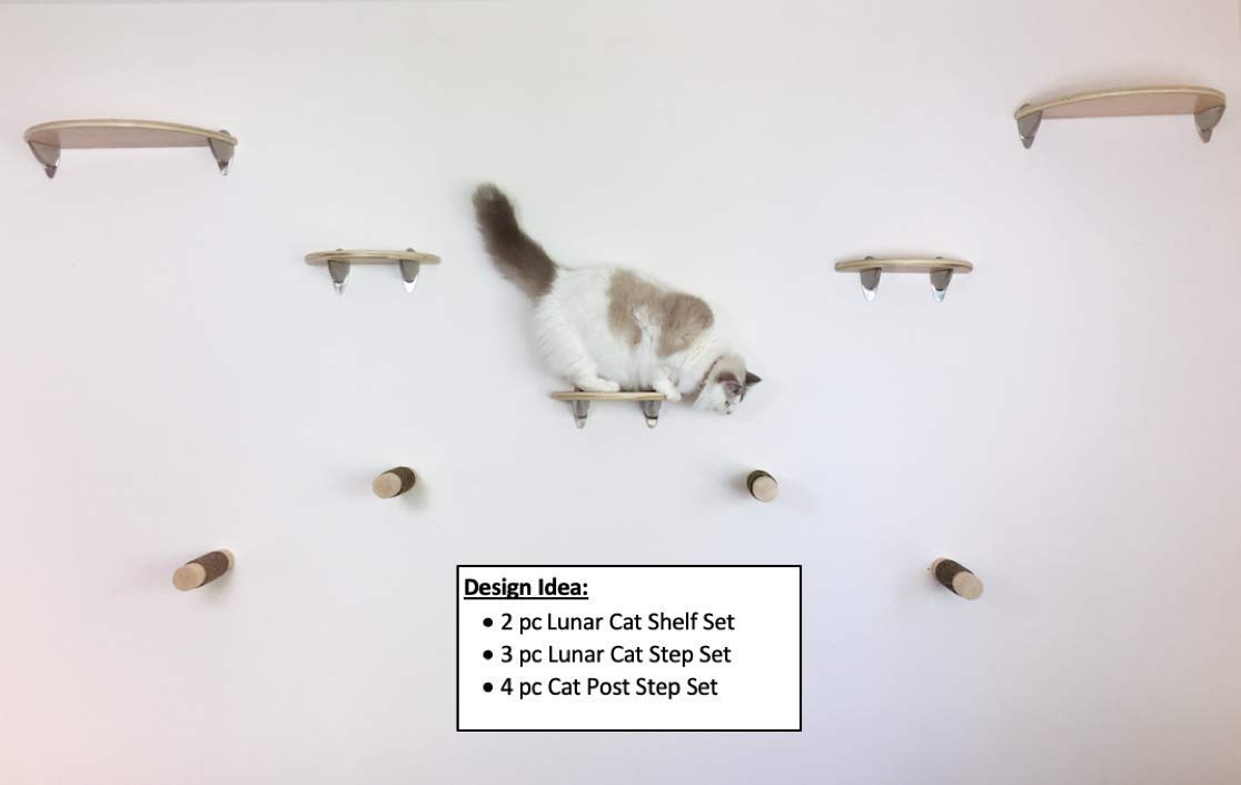 Choose wood /& bracket finish Handcrafted space saving cat climbing wall mounted activity tree shelves furniture Lunar Floating Cat Wall Steps 3pc step shelf set by Purrfectly Catastic