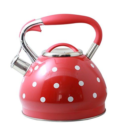 Riwendell 3.2 Quart Whistling Tea Kettle Stainless Steel Dot