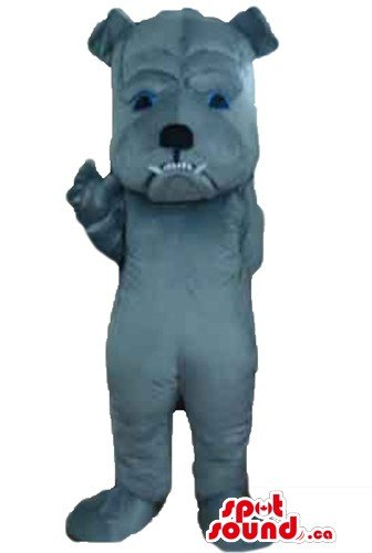 [Grey blue Bulldog Dog SpotSound Mascot US costume cartoon character fancy dress] (Blue Bull Mascot Costume)