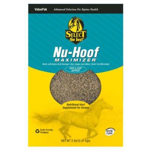 Nu Hoof Maximizer - Animal Health International 2B Nu Hoof Maximizer