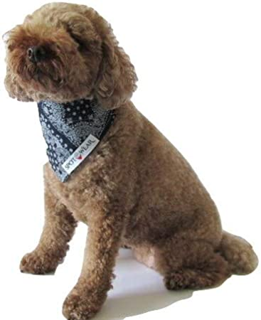 Spot Wear Dog Bandana, Over The Collar