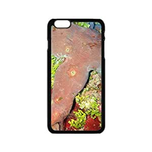 MMZ DIY PHONE CASEBeautiful Coral Hight Quality Plastic Case for Iphone 6