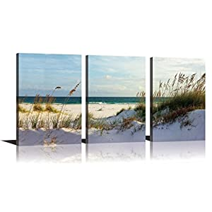 YPY Seascape Wall Art Green Canvas Painting Reed on Beach Sunny day 3 Panels Ready to Hang for Living Room Bedroom 16x24in