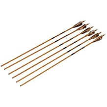 Gold Tip Traditional Arrows with 4-Inch Feathers (Pack of 6)