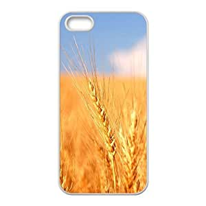 Golden rice field Phone Case for iPhone 5S(TPU)