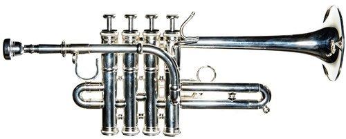 Band Directors Choice-SHOW DEMO- Piccolo Trumpet