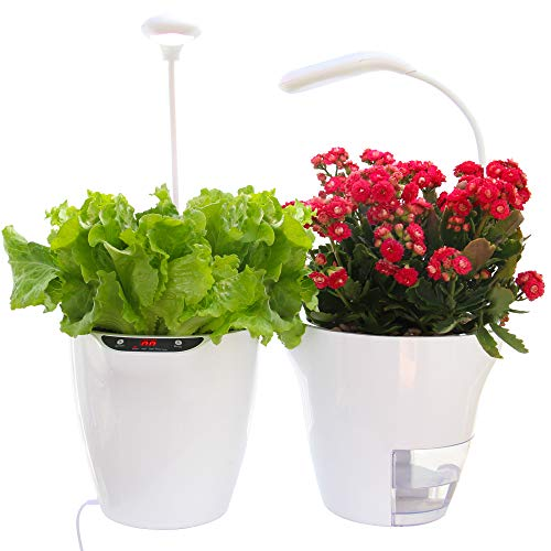 Self Watering Planter and LED Growlight, Indoor Herb Garden or Smart Flower Pot Low Intro Price, Countertop Garden Grows Organic Herbs or Flowers in Soil, No Hydroponics, No Chemicals