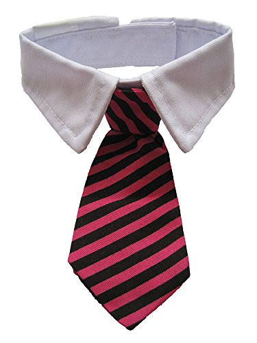 Leegoal Stripe White Collar Stripes