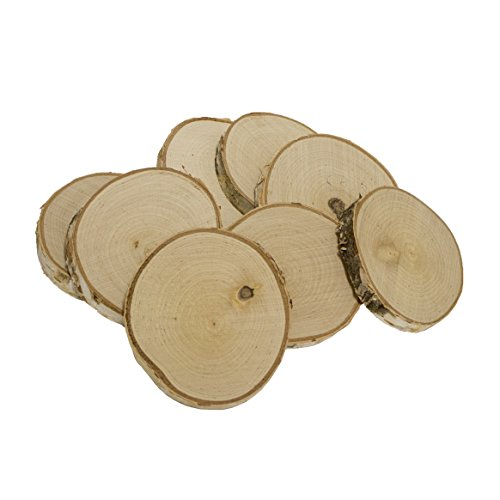 Walnut Hollow Bulk for & Rustic Weddings & Craft Projects Birch Coasters 8 Piece Pack, -
