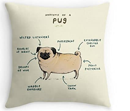 Amazon Cctusgsh Funny Anatomy Of A Pug Cute Puppy Cotton Throw