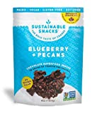Sustainable Snacks – Plant Based – Vegan, Paleo, Gluten Free, Soy Free and Non GMO for healthy snacking with Fruit, Nuts and 80% Dark Chocolate – No Refined Sugar (Blueberry + Pecan, 1 Bag) Review