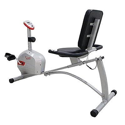 Sunny Health & Fitness SF-RB4417 Magnetic Recumbent Bike, Gray