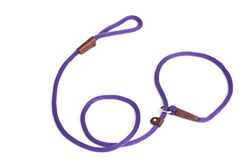 (Rover on Main Slip Lead Dog Leash for Pet Training by Cesar Millan Dog Products Made in The USA)