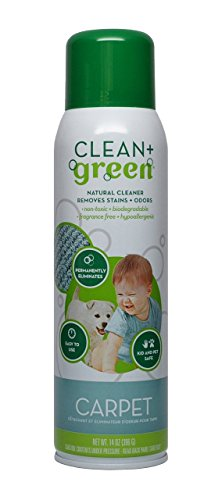 Clean+Green Carpet Cleaner Natural Stain and Odor Remover, Deep Clean Your Carpeted Floors with this Multi Purpose Spray- Safe for Pets, People and Environment, 14 oz.