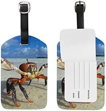 Beaches Travel Tags For Travel Tags Accessories 2 Pack Luggage Tags