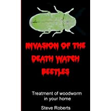 Invasion of the Death Watch Beetle: Treatment of woodworm in your home