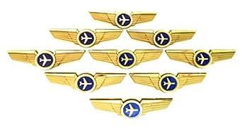 Amazon Com Kids Aviator Pilot Wings Plastic Pins Pinbacks