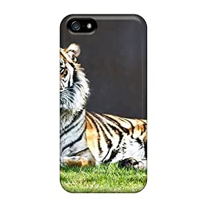 Iphone 5/5s Cases, Premium Protective Cases With Awesome Look - Tiger Staring
