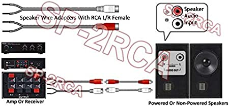 Estéreo RCA L/R RCA a Cable Adaptador para Altavoces Amplificador para el Coche: Amazon.es: Electrónica