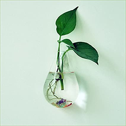 buy generic waterdrop shape glass wall hanging flower vase plant