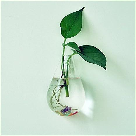 Maceta para Flores Planta Colgante de Pared Botella de Vidrio Agua Forma de Gota Decoración Casa: Amazon.es: Hogar