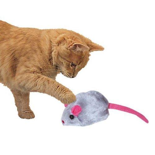 Play-N-Squeak, My Pet Supplies