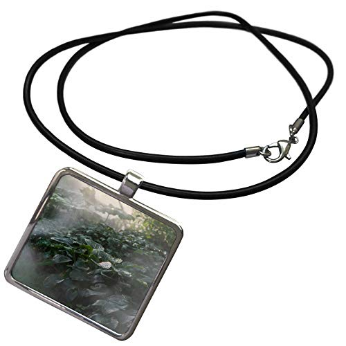3dRose Alexis Photography - Nature Plants Hosta - Water Mist, Wet hosta Leaves, Watering The Plants in The Garden - Necklace with Rectangle Pendant (ncl_297404_1)