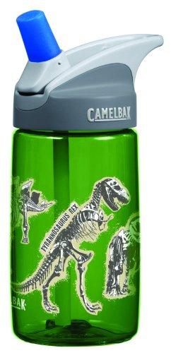 CamelBak 0.4-Liter Kids Bottle, Dinosaurs