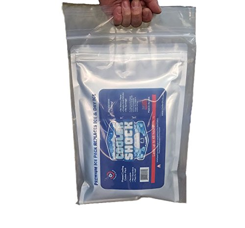 Cooler Shock Parent Clear 8 Mil Thick Sport - Fishing - Carry - Submersion Bags
