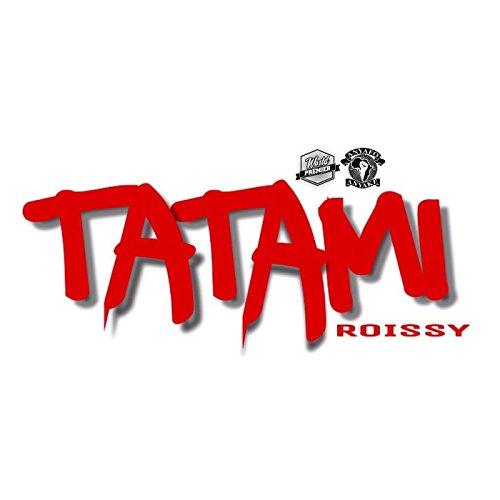 t u00c9l u00c9charger tatami roissy