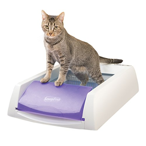 PetSafe ScoopFree Original Self-Cleaning Cat Litter Box, Automatic with Disposable Litter Tray and Blue Crystal Cat Litter, 2 Color Options from PetSafe