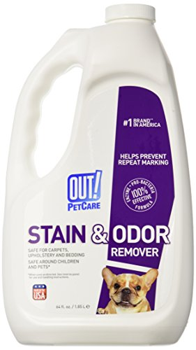 Dog Stain and Odor Remover Size: 64 oz.