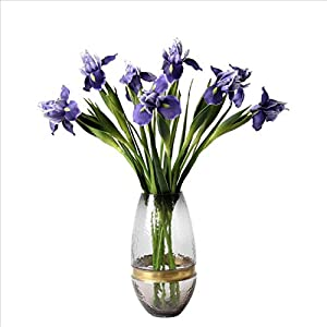 Zzooi Artificial Iris Tectorum Iris histrioides 3PCS Blue 6