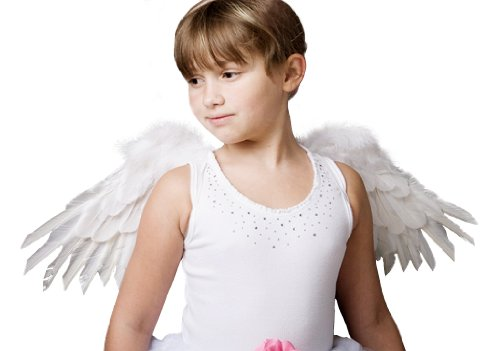 FashionWings Children's Unisex White Spread Feather Angel Wings and Halo & Bonus Photo Frame -