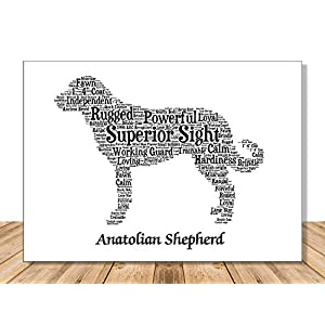 Anatolian Shepherd Dog Wall Art Print - Personalized Pet Name - Gift for Her or Him - 11x14 matted - Ships 1 Day 16