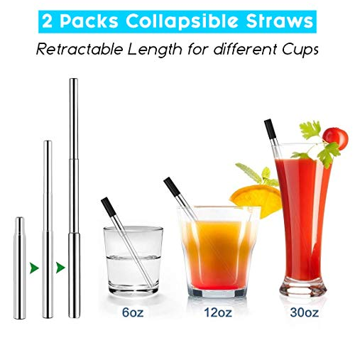 Upgraded Ectreme 2 Pack Telescopic Reusable Straws Portable Metal Straws with Case Cleaning Brush