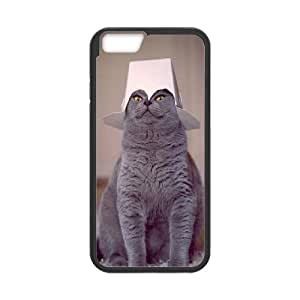"""WINDFC British Shorthair Cat Phone Case For iPhone 6 Plus (5.5"""") [Pattern-5]"""