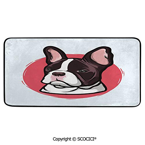 Rectangular Area Rug Super Soft Living Room Bedroom Carpet Rectangle Mat, Black Edging, Washable,Animal,Cute French Bulldog Artistic Portrait Hipster Purebred,39