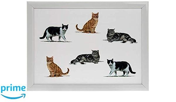 Leonardo Collection Bandeja para regazo, diseño de gatos, bandeja ...
