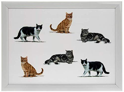 Leonardo Collection Cats Design Lap Tray - Bean Bag Serving Tray - Gift for Pet Lovers (Serving Tray Cat)
