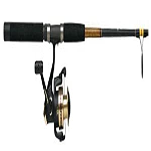 Shakespeare ugly stik 10 39 saltwater fishing rod reel for Amazon fishing rods