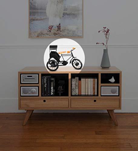 13''x9'' Iron Wooden Rickshaw, Decorative Metal 3 Wheeler Home Office, Artistic Miniature Tricycle Desks, Creative Gift Birthday, Anniversary, Christmas, Thanksgiving by Trumiri (Image #7)