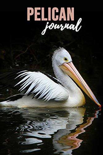 Pelican Journal: Lovely Notebook / Diary, Unique Birds Gift For Kids And Adults (Lined, 6