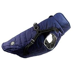Abrigo Chaqueta para Perro, Caliente para Mascotas, Chaqueta Chubasquero Impermeable de Invierno, Cazadora Perro con Forro Polar, Ropa para Perro. (7L, Azul)