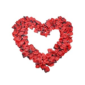 BTSD-home 3000 PCS Dark-Red Silk Rose Petals Wedding Flower Decoration 9