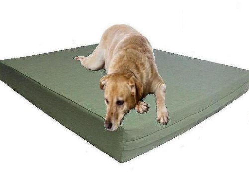 XXL Extra Large Waterproof 55″X37″X4″ Orthopedic Memory Foam Pad Pet Dog Bed with Tough External Canvas cover, My Pet Supplies